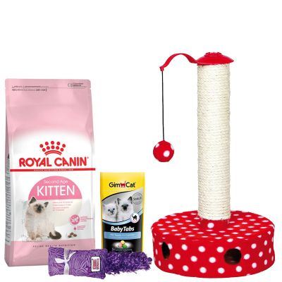7ca258414a12b1 Offre découverte spéciale chaton   Royal Canin Kitten + accessoires