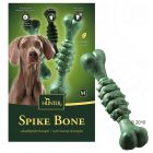 Os bucco-dentaires Hunter Spike Bone
