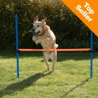 Outdoor Agility Fun & Sport - Horde