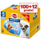 100 + 12 på köpet! Pedigree Dentastix Daily Oral Care / Dentastix Fresh Daily Freshness