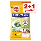 2 + 1 på köpet! 3 x 7 st Pedigree Dentastix Fresh