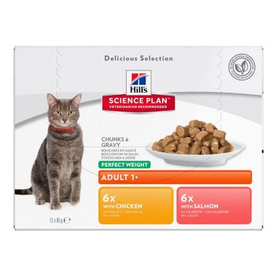 Pack bi-nutrition : 1 paquet de croquettes + 24 x 85 g de sachets Hill's Science Plan