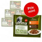 Pack gourmand : lot mixte Ultima pour chat