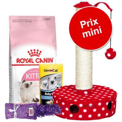 34a989f8d11e5a Croquettes pour chaton Royal Canin à un prix avantageux chez zooplus ...