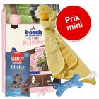 Pack Puppy : croquette Bosch + friandises Rinti + jouets