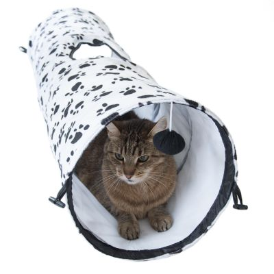 Pawty Cat Tunnel