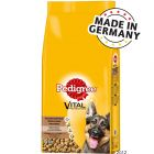 Pedigree Berger Allemand pour chien