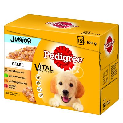 pedigree junior pouch in jelly multipack at great prices at bitiba