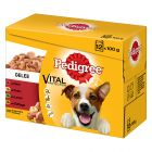 Pedigree Pouch in Gelee