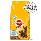 Pedigree Vital Protection Junior Maxi con Pollo e Riso