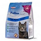 Porta 21 Feline Finest Cats Heaven pour chat