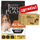 Pro Plan pienso + snacks Purina Dentalife ¡gratis!