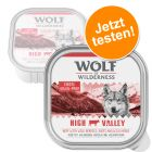 Probierangebot: Wilderness Adult 6 x 300 g - Schale