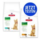 Probierpaket Hill's Science Plan Kitten 2 x 400 g