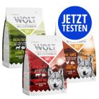 Probierpaket Wolf of Wilderness