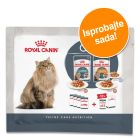 Probno pakiranje: Royal Canin Hairball & Intense Beauty 4 x 85g