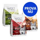 Prova nu: 3 x 1 kg Wolf of Wilderness Adult Soft & Strong torrfoder