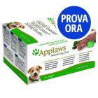 Provalo! Applaws Dog Paté 5 x 150 g