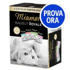 Provalo! Miamor Ragù Royal in Salsa 12 x 100 g