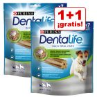 Purina Dentalife snacks dentales en oferta: 1 + 1 ¡gratis!
