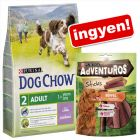 PURINA Dog Chow bárány 2,5 kg + AdVENTuROS Sticks ingyen!