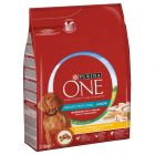 PURINA ONE Medium/Maxi Junior poulet pour chiot