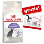 Royal Canin + 4 x 85 g umido in buste gratis!