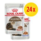 Royal Canin Mature Jelly & Gravy Mixed Pack 24 x 85g