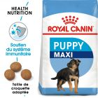 Royal Canin Maxi Puppy/Junior pour chiot