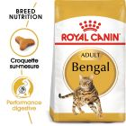 Royal Canin Bengal Adult pour chat