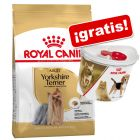 Royal Canin Breed 3 a 4,5 kg + Contenedor de pienso Royal Canin ¡gratis!