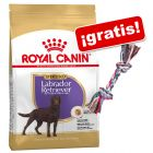 Royal Canin Breed 9 a 12 kg + Cuerda Trixie multicolor ¡gratis!