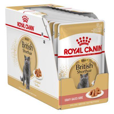 umido per gatti royal canin breed british shorthair zooplus. Black Bedroom Furniture Sets. Home Design Ideas