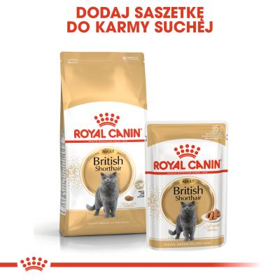 Royal Canin Breed British Shorthair Adult