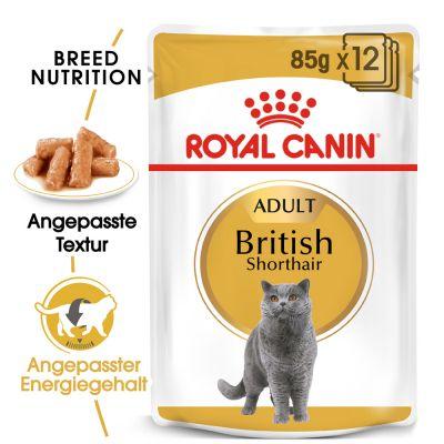 royal canin breed british shorthair g nstig kaufen zooplus. Black Bedroom Furniture Sets. Home Design Ideas