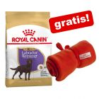 Royal Canin Breed hundefôr + Royal Canin hundeteppe gratis!