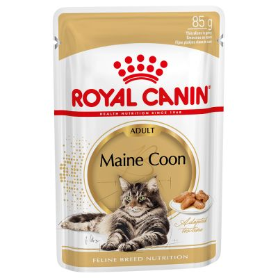 Royal Canin Breed Maine Coon in Salsa