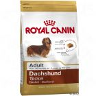 Royal Canin Breed Teckel Adult Hondenvoer