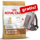 Royal Canin Breed + Zainetto gratis!