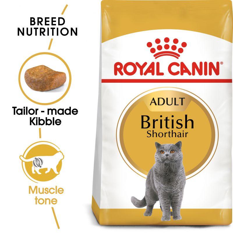 Royal Canin British Shorthair Adult