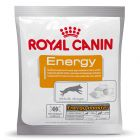 Royal Canin Energy Recompensas de Treino