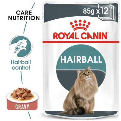 Dishes, Feeders & Fountains Cat Supplies 85g Helpful New Royal Canin Adult British Shorthair In Gravy