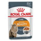 Royal Canin Intense Beauty în gelatină