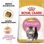 Royal Canin Kattenvoer - Persian Kitten