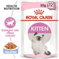 Royal Canin Kitten in Gelatina