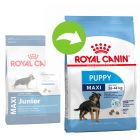 Royal Canin Maxi Puppy/Junior