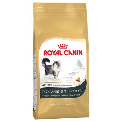 Royal Canin Norvegese Delle Foreste Zooplus