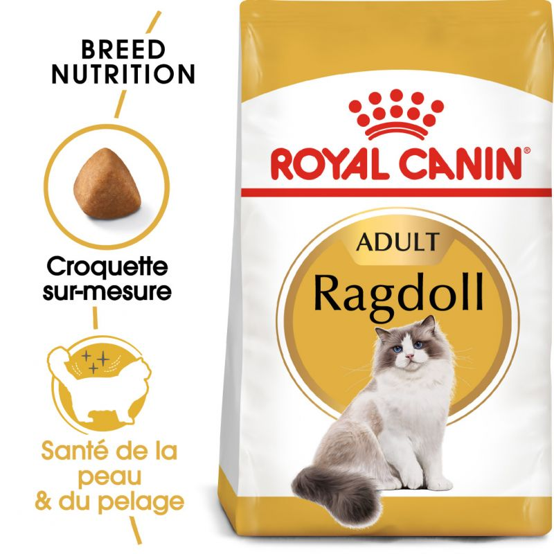 chatte humide et gros seins