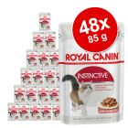 Royal Canin Sparpaket 48 x 85 g