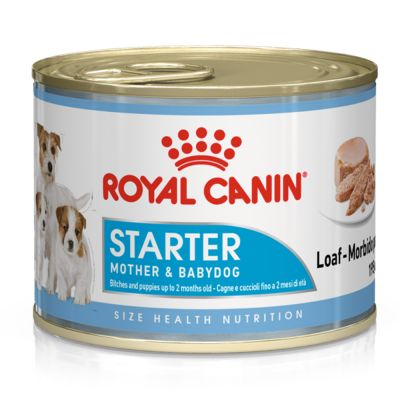 Royal Canin Starter Mousse Mother & Babydog pour chien
